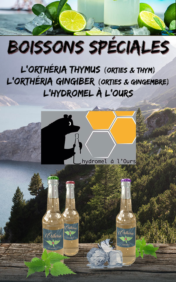 boisson-speciale-ortheria-hydromel-thym-gingembre